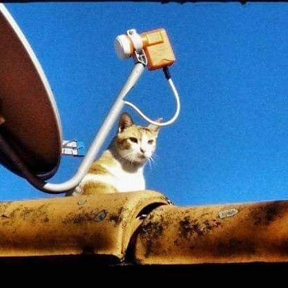Instalador de antenas via satélite