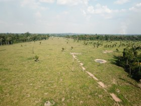 Fazenda em Triunfo - 53 alqueires - Dupla Aptidão