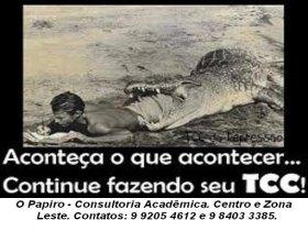 Consultoria Acadêmica.
