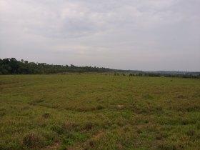 fazenda Rio Crespo - 1130 alqueires