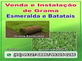 Venda e instalação de grama esmeralda e batatais