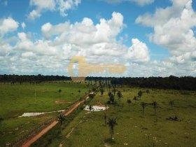 Fazenda Porteira Fechada 42 Km PVH