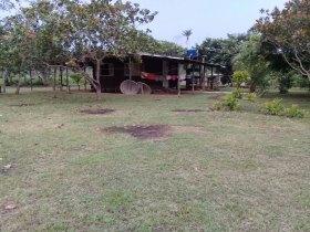 Vendo Área rural à 15 KM de PVH C/ 50 hectares