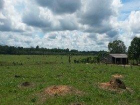 Fazenda a 62km de PVH sentido Humaitá