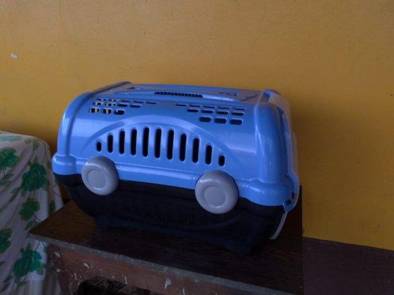 Casinha para transporte de cachorro