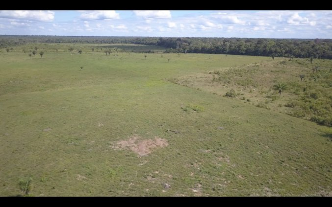 Fazenda 4.200 hectares em Humaita