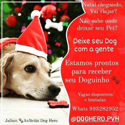 DogHero - Cuidador de cães