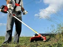 Roçamos e limpamos terrenos