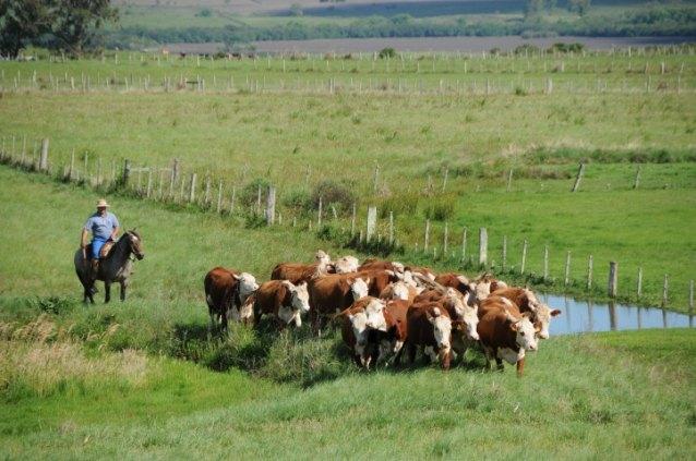 Compre seu sítio, terreno, chácara ou fazenda parcelado